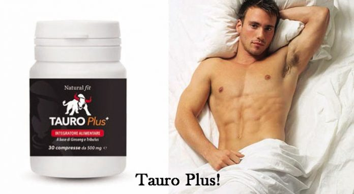 Compresse Tauro Plus
