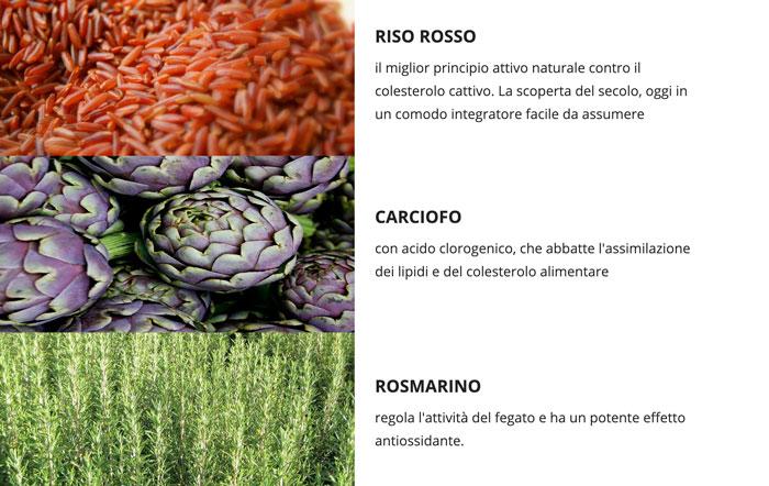 Ingredienti di Zerocol colesterolo