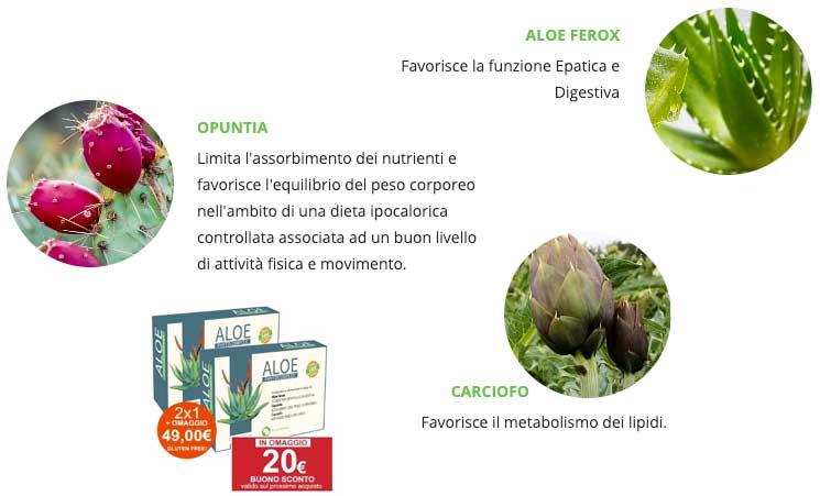Ingredienti di Aloe Phytocomplex