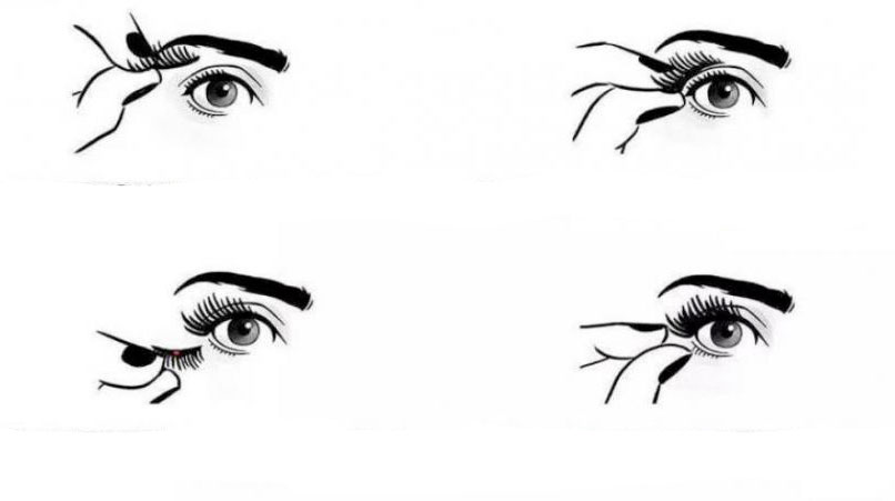 Come applicare le ciglia Black Eyelashes